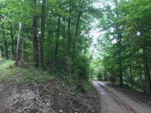 Land for Sale at Smith-Chapel Logan, Ohio 43138 United States