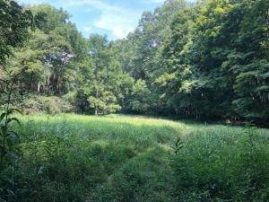 Land for Sale at Walnut-Dowler Logan, Ohio 43138 United States