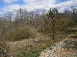 4. Land for Sale at 9365 Ridgeview Chandlersville, Ohio 43727 United States