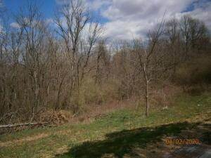 3. Land for Sale at 9365 Ridgeview Chandlersville, Ohio 43727 United States