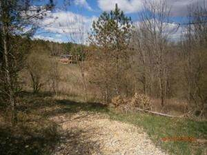 7. Land for Sale at 9365 Ridgeview Chandlersville, Ohio 43727 United States