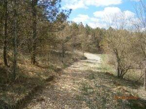 8. Land for Sale at 9365 Ridgeview Chandlersville, Ohio 43727 United States
