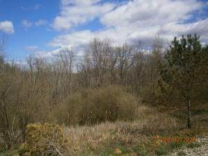 9. Land for Sale at 9365 Ridgeview Chandlersville, Ohio 43727 United States