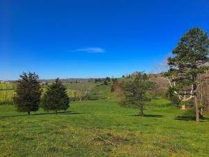 Land for Sale at Buck Ridge Bidwell, Ohio 45614 United States