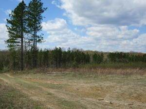 Land for Sale at Tunnel Lane 730 Tract B Bidwell, Ohio 45614 United States