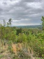 Land for Sale at State Route 335-In Beaver, Ohio 45613 United States
