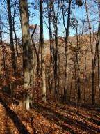 Land for Sale at Bauer Logan, Ohio 43138 United States