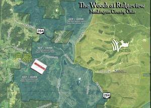 12. Land for Sale at Ridgeview Chandlersville, Ohio 43727 United States