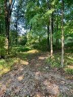 Land for Sale at 5199 Township Road 191 Marengo, Ohio 43334 United States