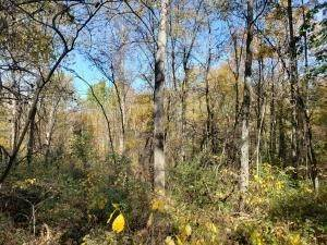 43. Land for Sale at Ridgeview Chandlersville, Ohio 43727 United States