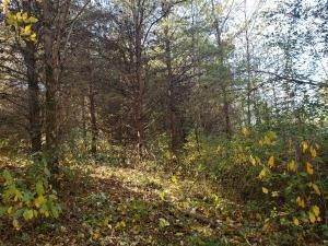 18. Land for Sale at Ridgeview Chandlersville, Ohio 43727 United States
