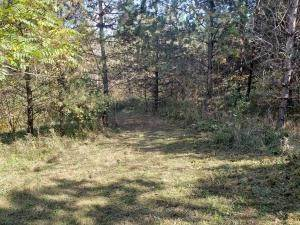 22. Land for Sale at Ridgeview Chandlersville, Ohio 43727 United States