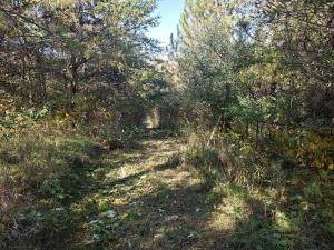 17. Land for Sale at Ridgeview Chandlersville, Ohio 43727 United States