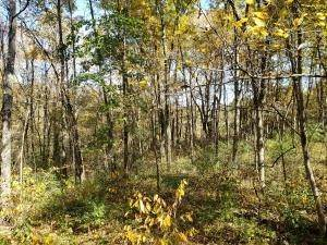 31. Land for Sale at Ridgeview Chandlersville, Ohio 43727 United States