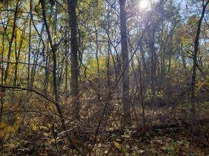 36. Land for Sale at Ridgeview Chandlersville, Ohio 43727 United States