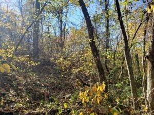38. Land for Sale at Ridgeview Chandlersville, Ohio 43727 United States
