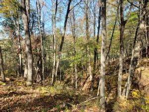 45. Land for Sale at Ridgeview Chandlersville, Ohio 43727 United States