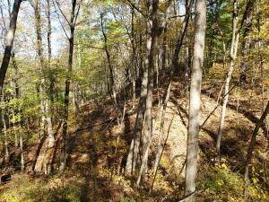 50. Land for Sale at Ridgeview Chandlersville, Ohio 43727 United States