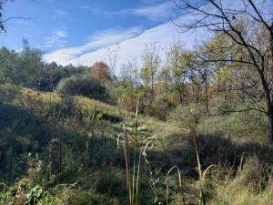 9. Land for Sale at Ridgeview Chandlersville, Ohio 43727 United States