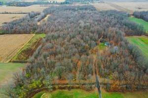 Land for Sale at Twp Rd 224 Ashley, Ohio 43003 United States