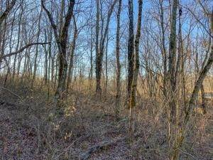 5. Land for Sale at Drake Martin Chandlersville, Ohio 43727 United States