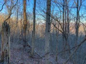 8. Land for Sale at Drake Martin Chandlersville, Ohio 43727 United States